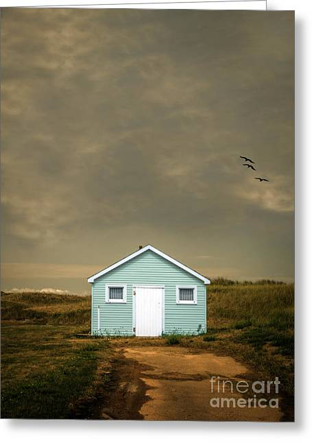 Shack Greeting Cards - Lonely Beach Shack Greeting Card by Edward Fielding