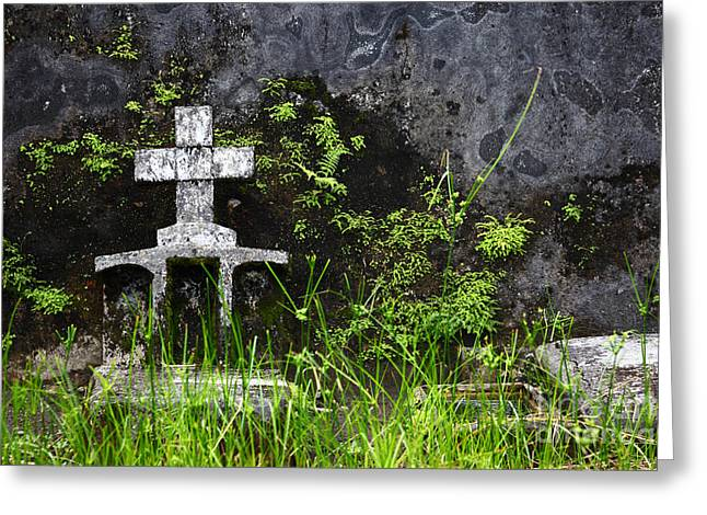 Lonely Grave Greeting Card by James Brunker