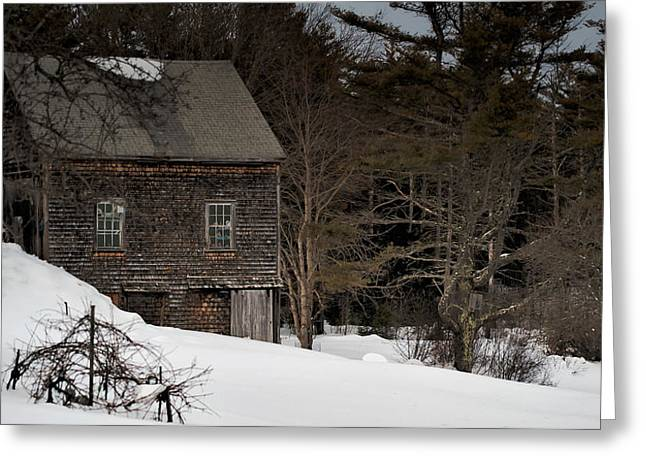 Old Maine Houses Greeting Cards - Lonely in the Winter Greeting Card by Richard Bean