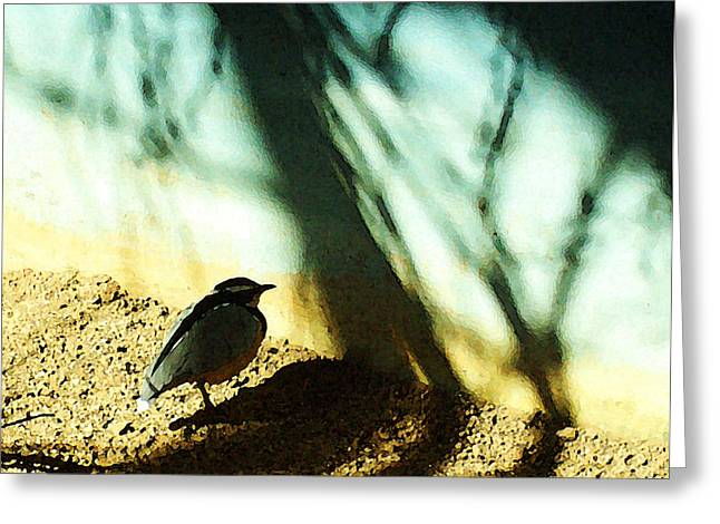 Cheeseburger Digital Art Greeting Cards - Lonely Little Bird Greeting Card by Shawna  Rowe