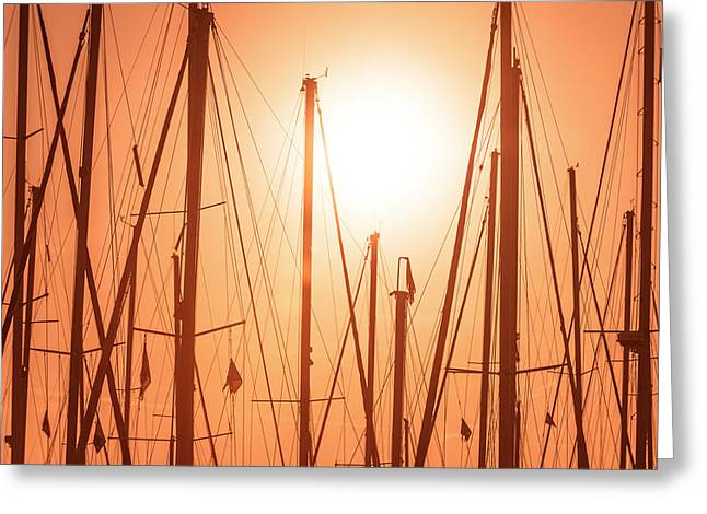 Reflecting Water Pyrography Greeting Cards - Lonely masts Greeting Card by Oliver Sved