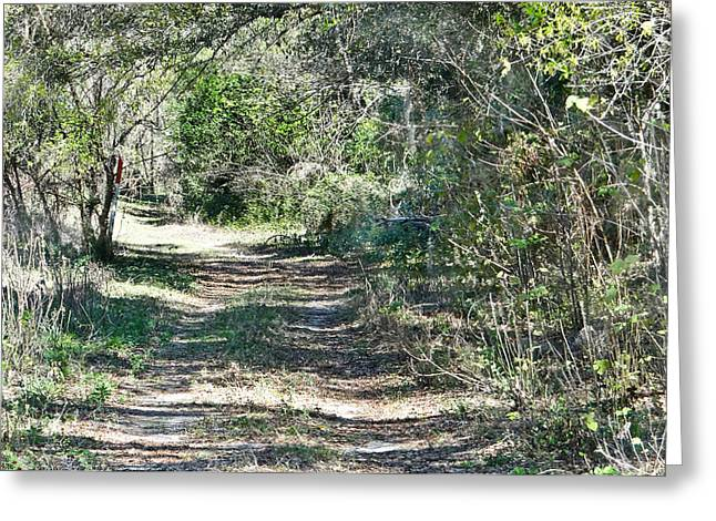 Country Dirt Roads Mixed Media Greeting Cards - Lonely Road Greeting Card by Dennis Dugan