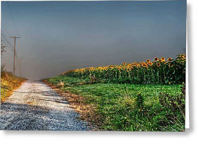 Hunterdon County Greeting Cards - Lonely Road Greeting Card by Ryan Crane