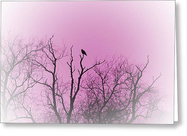 Bird In Tree Greeting Cards - Lonely roost Greeting Card by Sharon Lisa Clarke