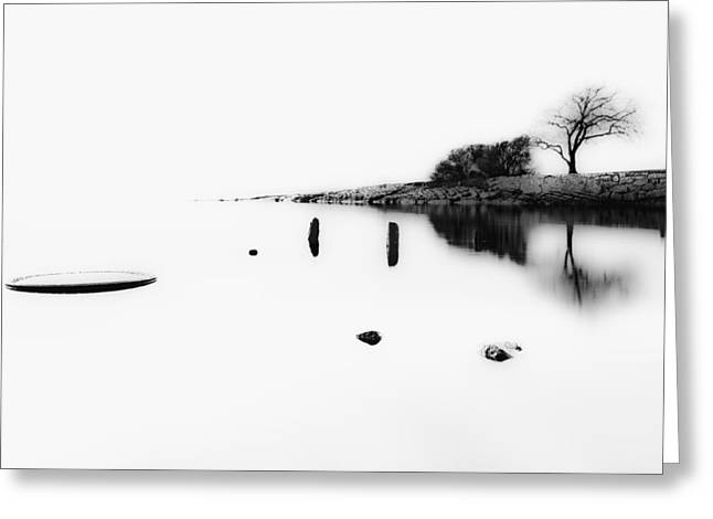 Ocean. Reflection Greeting Cards - Lonely Tree Greeting Card by Erik Brede