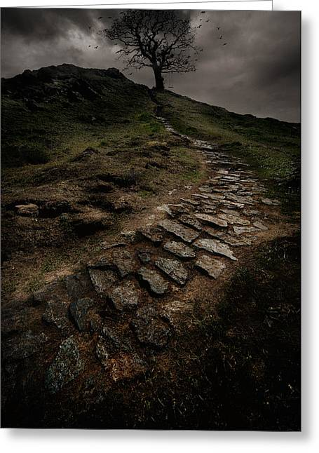Lonely Tree Greeting Card by Jaroslaw Blaminsky