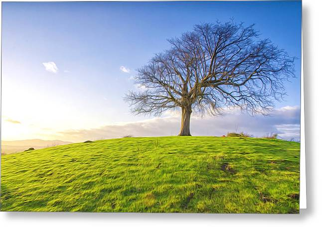 Winemaking Paintings Greeting Cards - Lonely tree on a field  Greeting Card by Lanjee Chee