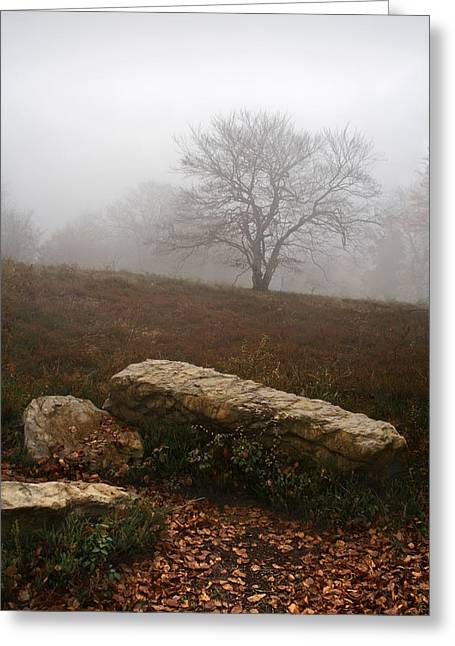 Fall Scenes Greeting Cards - Lonely Tree On Cold And Desolate Landscape Greeting Card by Mikel Martinez de Osaba