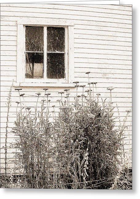 Lonely Winter Flowers Greeting Card by Jon Woodhams