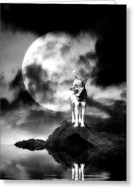 Howling Greeting Cards - Lonely wolf with full moon Greeting Card by Jaroslaw Grudzinski