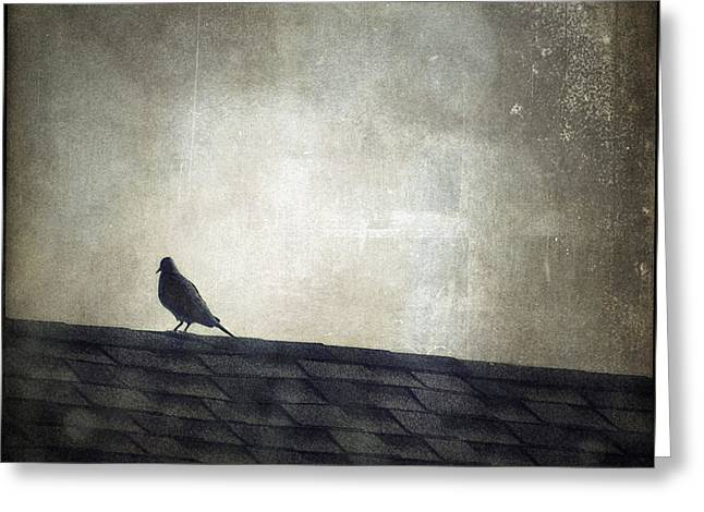 Leflaneuse Texture Greeting Cards - Lonesome Dove Greeting Card by Trish Mistric