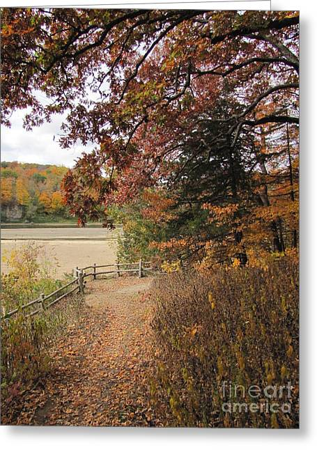 Fall Grass Greeting Cards - Lonesome Path Greeting Card by Minding My  Visions by Adri and Ray