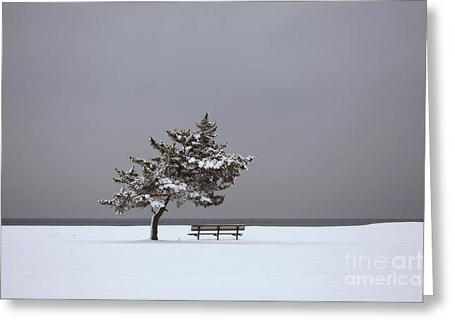 Lonesome Winter Greeting Card by Karol Livote