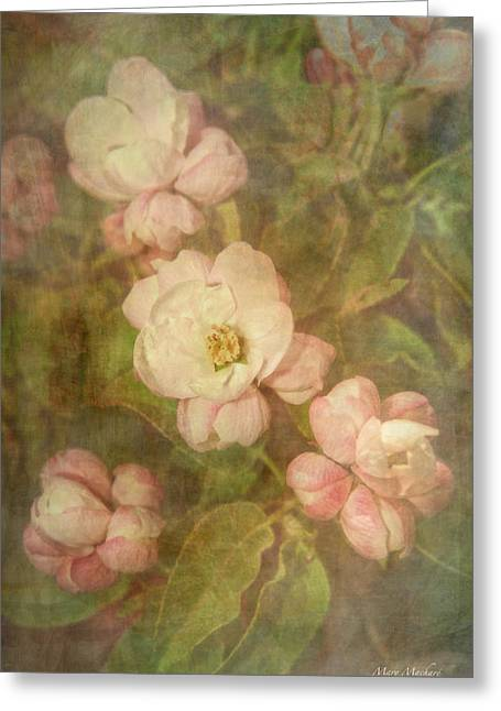 Long Ago Greeting Cards - Long Ago Under The Apple Tree Greeting Card by Mary Machare