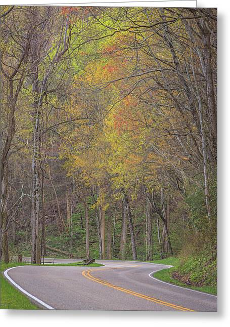 Smoky Greeting Cards - Long and Winding Road Greeting Card by Mike Lang