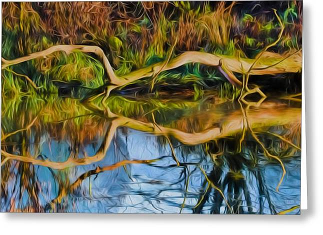 Trees Reflecting In Creek Greeting Cards - Long Arms IMP Greeting Card by Leif Sohlman