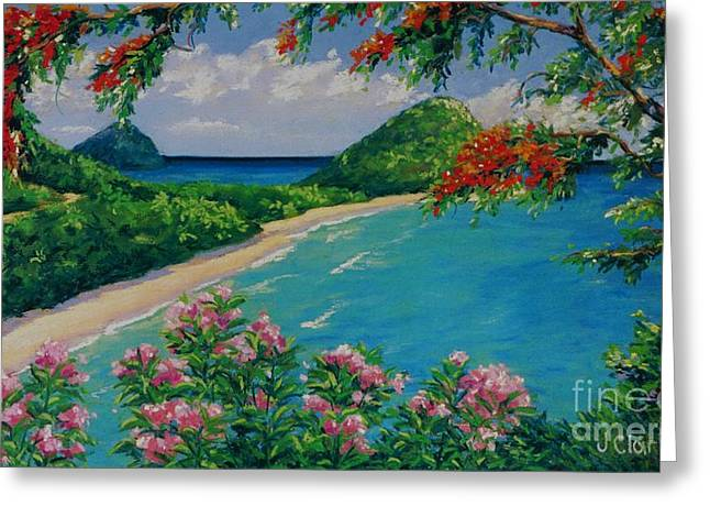 Tropical Oceans Pastels Greeting Cards - Long Bay Tortola   9x15 Greeting Card by John Clark