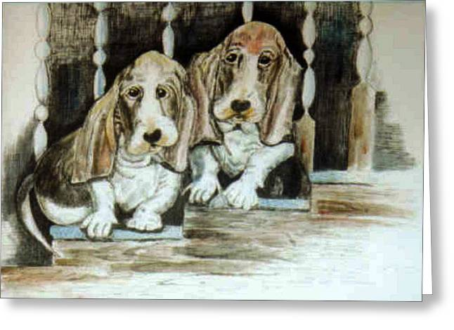 Painted Puppies Drawings Greeting Cards - Long Eared Hound Puppies Greeting Card by Dorcas Otis