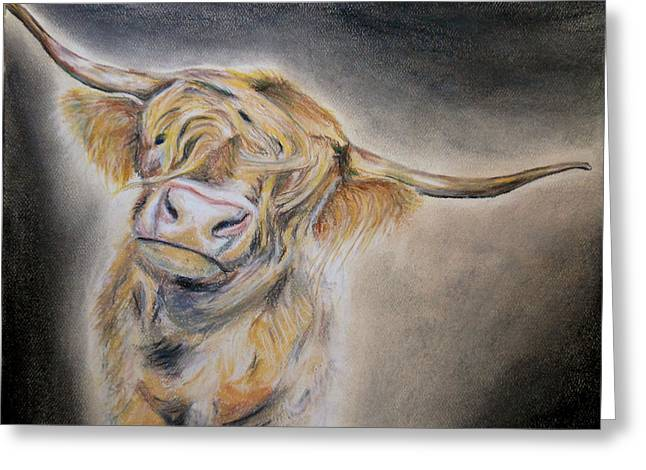 Michelle Pastels Greeting Cards - Long Haired Cow Greeting Card by Michelle Iglesias