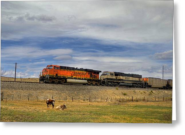 Bnsf Greeting Cards - Long Horn Cattle and Coal Train Greeting Card by Ken Smith