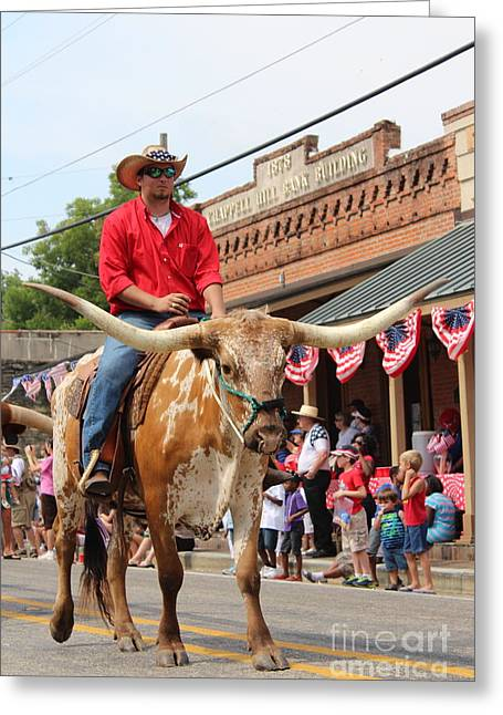 4th Of July Parade Greeting Cards - Long  Horn Rider Greeting Card by Denise Bossarte