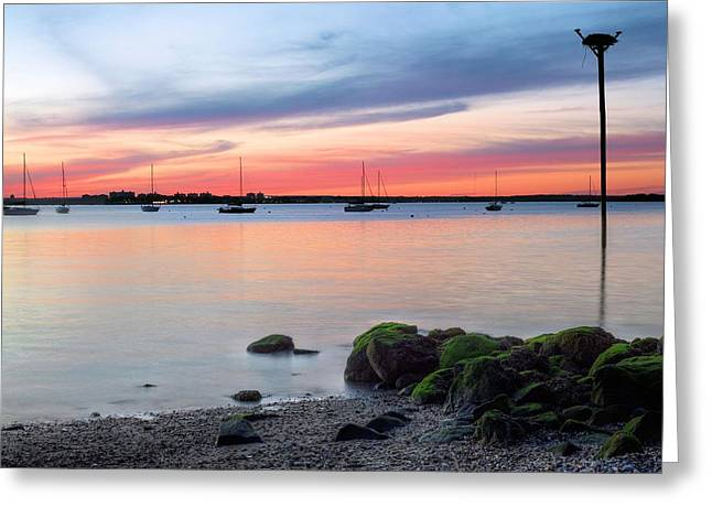 Great Neck Greeting Cards - Long Island Greeting Card by JC Findley
