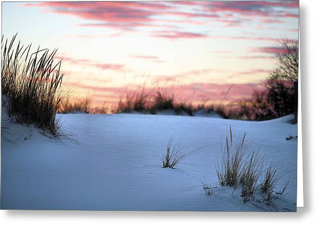 Sea Oats Greeting Cards - Long Island Sunset Greeting Card by JC Findley
