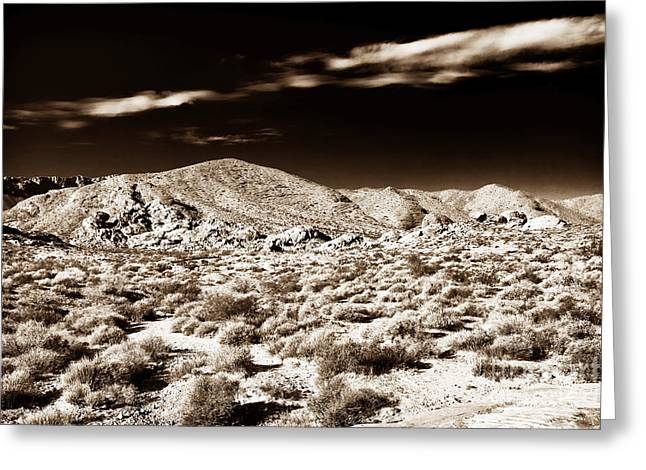 Brown Tones Greeting Cards - Long Journey Home Greeting Card by John Rizzuto