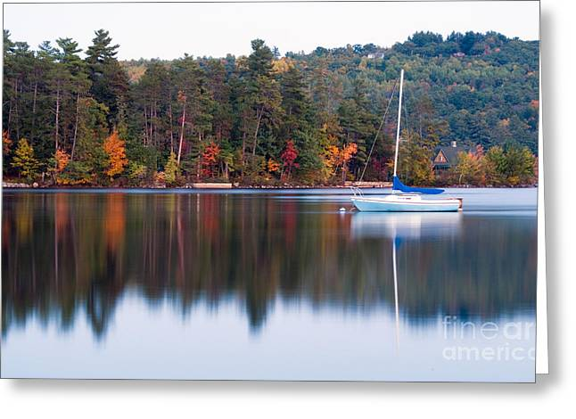 Maine Lake Greeting Cards - Long Lake, Maine Greeting Card by Bill Bachmann