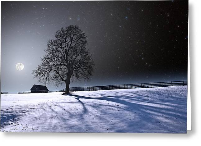 Snowy Night Night Greeting Cards - Long Moonrise Shadows Greeting Card by Larry Landolfi