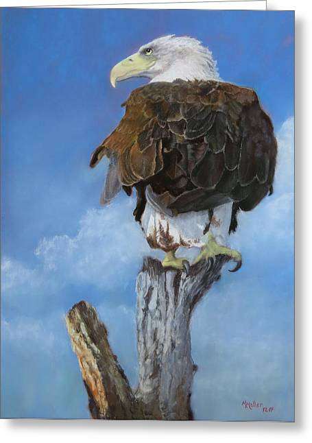 Bald Eagle Pastels Greeting Cards - Long Pale Beak Greeting Card by Marcus Moller