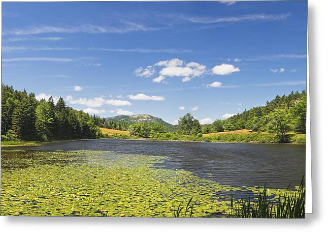 Field. Cloud Greeting Cards - Long Pond - Acadia National Park - Mount Desert Island - Maine Greeting Card by Keith Webber Jr