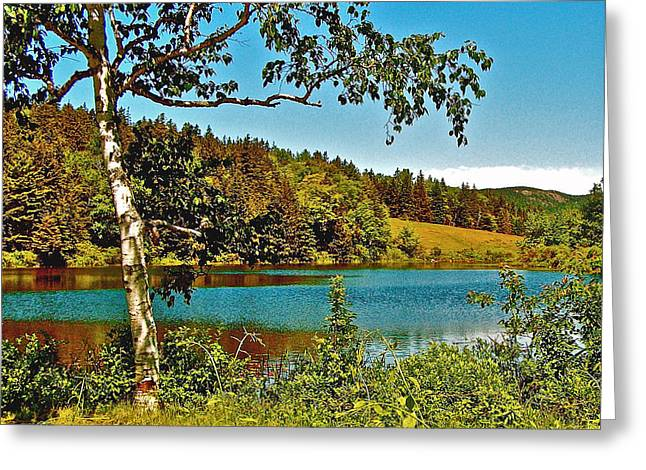 Pond In Park Greeting Cards - Long Pond in Acadia National Park-Maine  Greeting Card by Ruth Hager