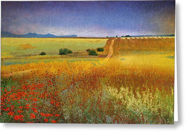 Country Dirt Roads Mixed Media Greeting Cards - Long Road Late Summer Greeting Card by R christopher Vest