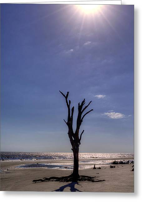 Chrystal Greeting Cards - Long Shadow on Jekyll Island Greeting Card by Greg and Chrystal Mimbs