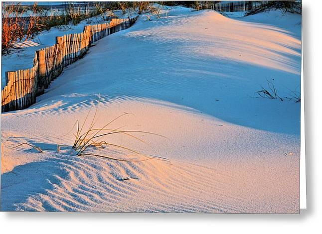 Florida Panhandle Greeting Cards - Long Shadows in Navarre Greeting Card by JC Findley