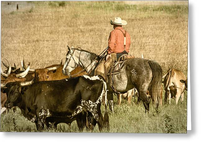 Dude Ranch Greeting Cards - Longhorn Round Up Greeting Card by Steven Bateson