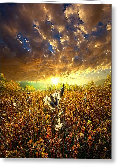 Milkweed Greeting Cards - Longing to Return Greeting Card by Phil Koch