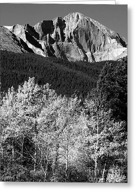 Colorado Nature Photographs Greeting Cards - Longs Peak 14256 Ft Greeting Card by James BO  Insogna