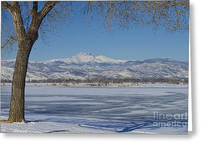 Longs Peaks Winter Landscape View Greeting Card by James BO  Insogna