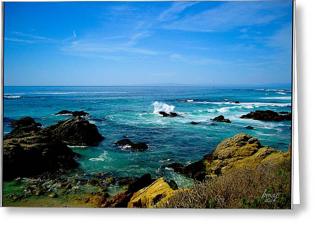 Half Moon Bay Greeting Cards - Look Beyond  Greeting Card by Barbara R MacPhail