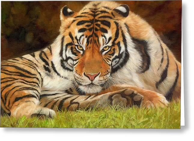 Tigress Greeting Cards - Look Into My Eyes Greeting Card by David Stribbling