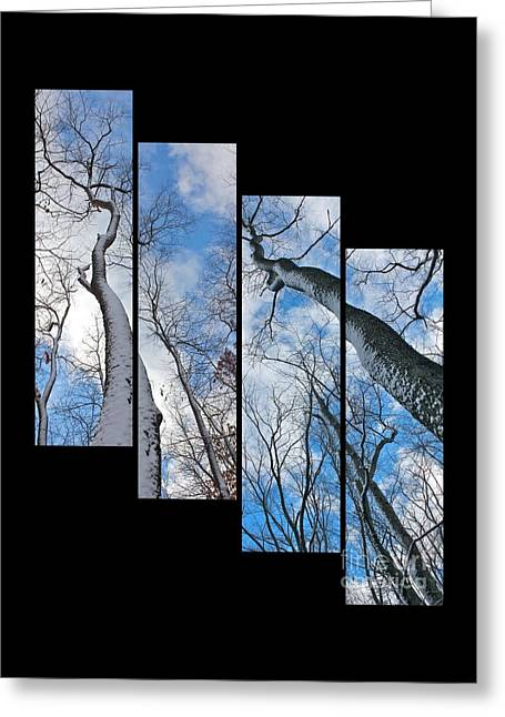 Snowy Day Greeting Cards - Look up at the Trees-collage Greeting Card by Marie Spence