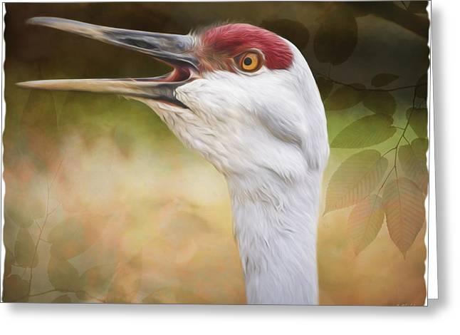 Look Who's Talking - Bird Art Greeting Card by Jordan Blackstone
