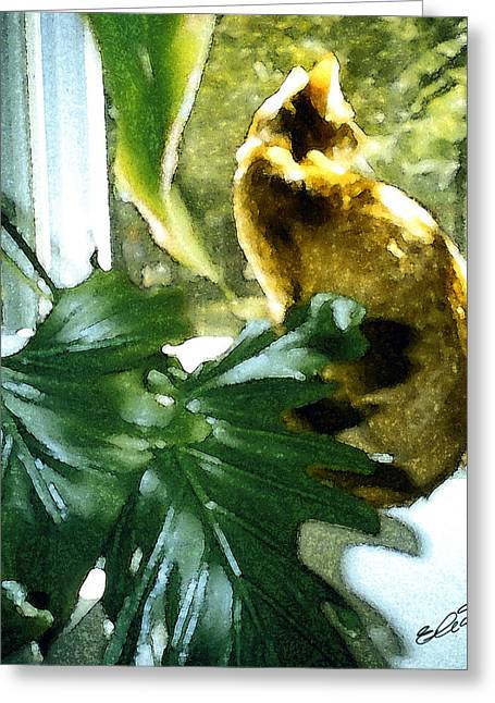 Kitten Prints Mixed Media Greeting Cards - Looking and Looking Greeting Card by Elia Peters