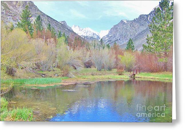 Big Pine Country Greeting Cards - Looking At Perfection Greeting Card by Marilyn Diaz