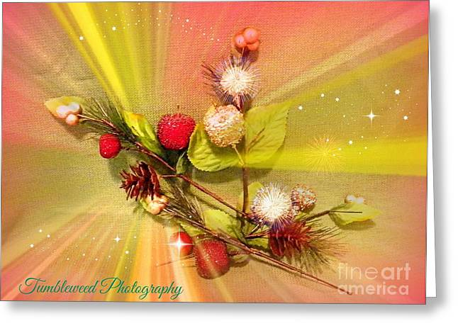 Bright Pastels Greeting Cards - looking at the Holiday Greeting Card by Carol Grenier