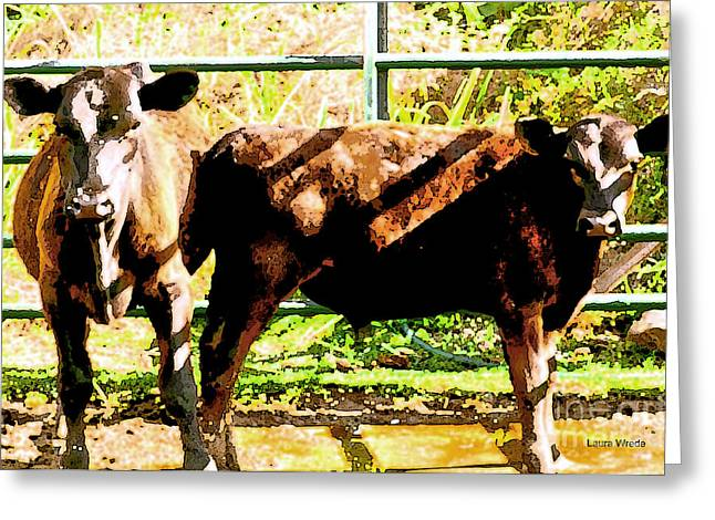 Cow Images Photographs Greeting Cards - Looking at You Greeting Card by Artist and Photographer Laura Wrede