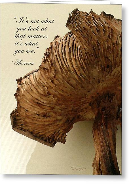 Henry David Thoreau Greeting Cards - Looking Beyond Greeting Card by James Temple