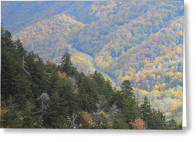 Gatlinburg Tennessee Greeting Cards - Looking Down On Autumn From The Top Of Smoky Mountains Greeting Card by Dan Sproul